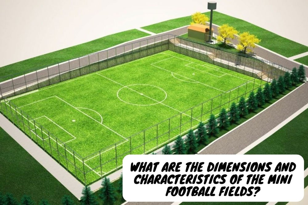 what are the dimensions and characteristics of the mini football fields
